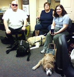 image of volunteers and guide dogs